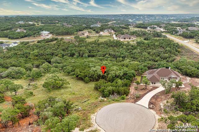 1426 Robusto, New Braunfels, TX 78132 (#1545024) :: Zina & Co. Real Estate