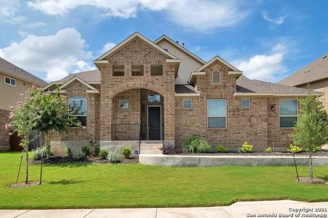25707 Berberis, San Antonio, TX 78261 (MLS #1546092) :: The Castillo Group