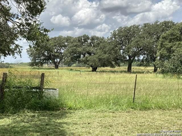 25195 Mathis Rd, Elmendorf, TX 78112 (MLS #1546840) :: Texas Premier Realty