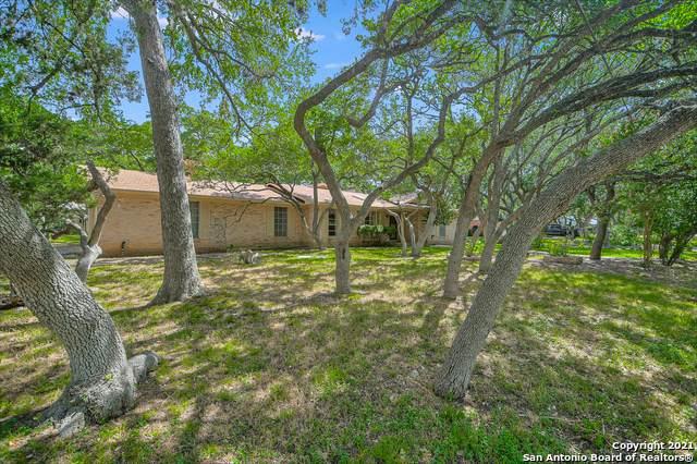 313 Skyforest Dr, Hollywood Pa, TX 78232 (MLS #1547065) :: Carter Fine Homes - Keller Williams Heritage