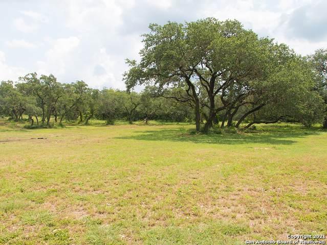 16255 Scenic Loop Rd, Helotes, TX 78023 (MLS #1547526) :: EXP Realty