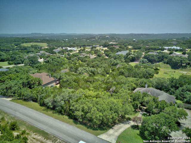 442 Bentwood Dr, Spring Branch, TX 78070 (MLS #1548095) :: The Lopez Group