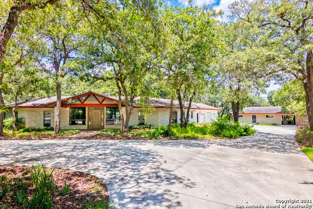 313 Forest Country Dr, La Vernia, TX 78121 (#1548382) :: Zina & Co. Real Estate