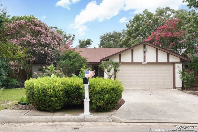 6022 Royal Crk, San Antonio, TX 78239 (MLS #1549579) :: The Gradiz Group