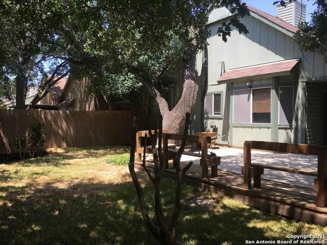 4230 Birch Tree St, San Antonio, TX 78247 (MLS #1549768) :: Exquisite Properties, LLC