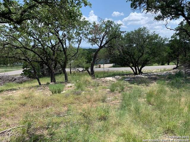 L28 Janine Dr, Canyon Lake, TX 78133 (MLS #1550023) :: Countdown Realty Team