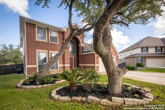 3322 Collin Cove, San Antonio, TX 78253 (MLS #1556292) :: The Glover Homes & Land Group