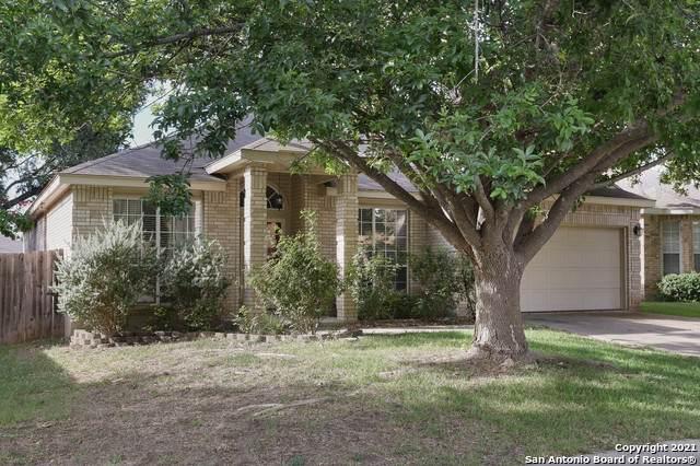 16919 Kentucky Trl, San Antonio, TX 78247 (MLS #1558999) :: The Glover Homes & Land Group