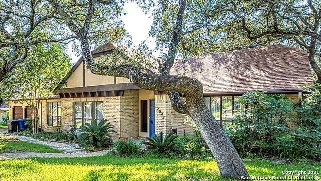 13043 N Hunters Cir, San Antonio, TX 78230 (MLS #1559033) :: Alexis Weigand Real Estate Group