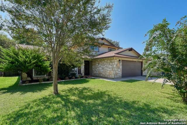 5334 Walnut Vista Dr, San Antonio, TX 78247 (MLS #1560146) :: Carter Fine Homes - Keller Williams Heritage