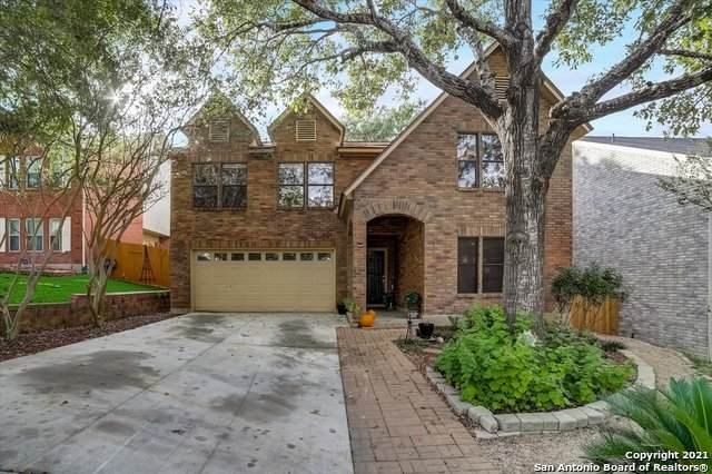 11113 Cherry Park Dr, San Antonio, TX 78249 (MLS #1561862) :: Alexis Weigand Real Estate Group