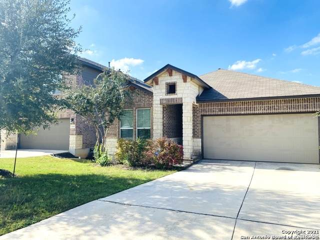 22419 Akin Fawn, San Antonio, TX 78261 (MLS #1567878) :: BHGRE HomeCity San Antonio