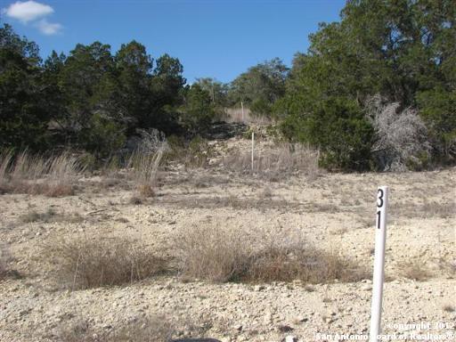 930 Rhinestone, Canyon Lake, TX 78133 (MLS #930820) :: Alexis Weigand Real Estate Group