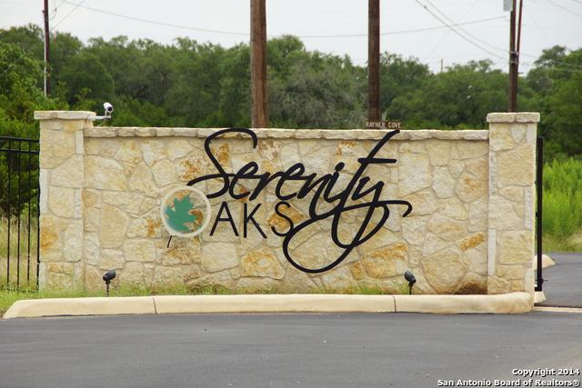119 Restless Wind, Spring Branch, TX 78070 (MLS #1065761) :: Erin Caraway Group