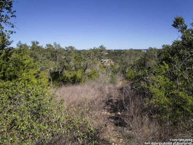 318 Pr 1703 (Forever Ridge), Helotes, TX 78023 (MLS #1221486) :: Alexis Weigand Real Estate Group
