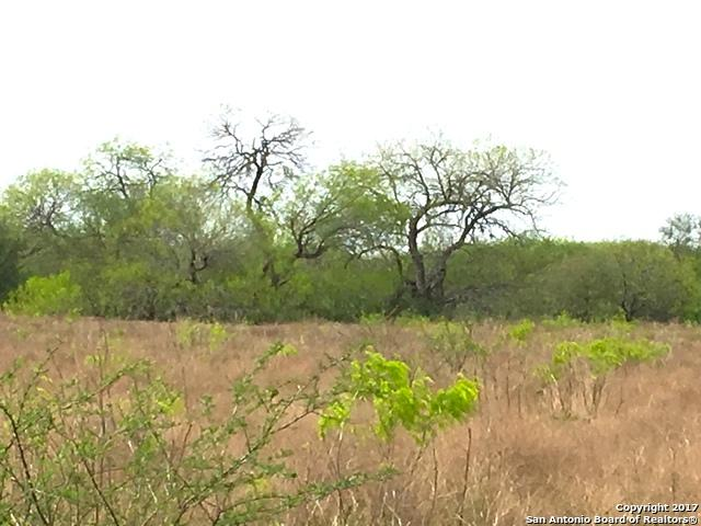 25 AC Hwy 59, Beeville, TX 78102 (MLS #1227782) :: Ultimate Real Estate Services