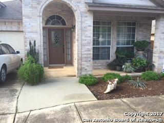 14 Amber Forest, San Antonio, TX 78232 (MLS #1230689) :: Exquisite Properties, LLC