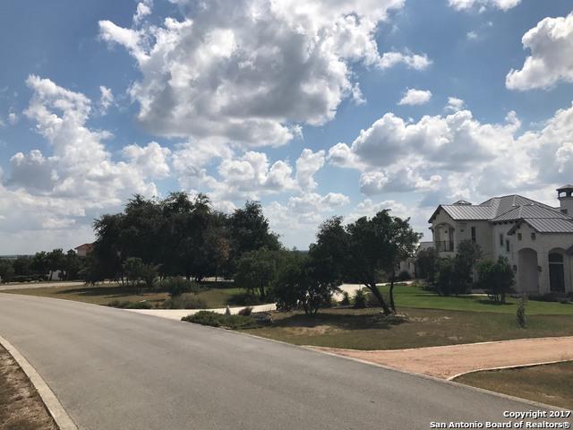 13307 Roundup Pass, San Antonio, TX 78245 (MLS #1266867) :: Magnolia Realty