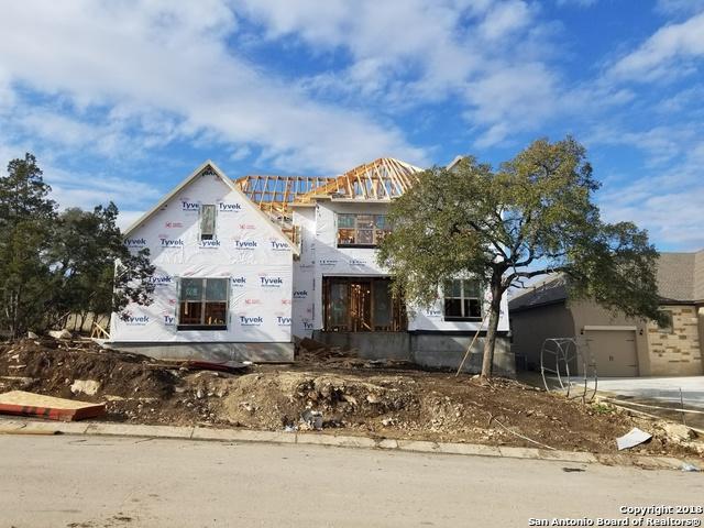 1907 Serapio Ln, San Antonio, TX 78260 (MLS #1287293) :: Exquisite Properties, LLC