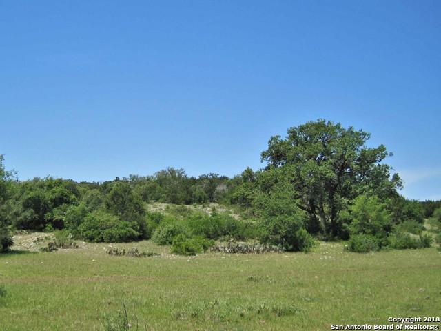 12-14 County Road 2412, Hondo, TX 78861 (MLS #1289797) :: Exquisite Properties, LLC