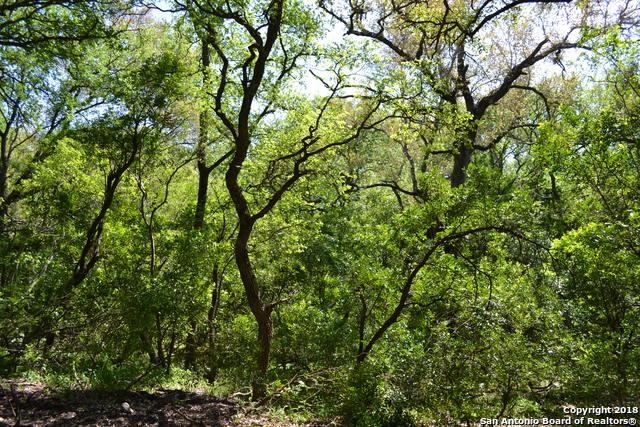 LOT 4 County Rd 473, Castroville, TX 78009 (MLS #1290240) :: Alexis Weigand Real Estate Group