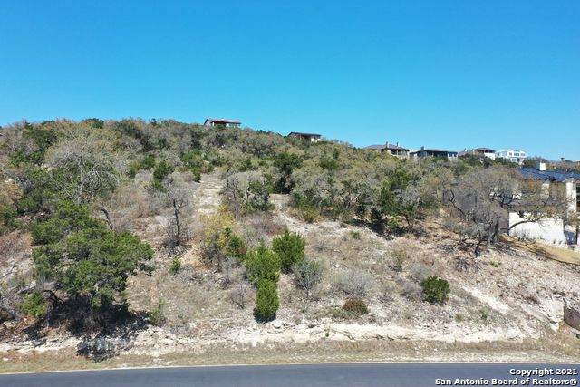 19535 Terra Mont, San Antonio, TX 78255 (MLS #1292623) :: Williams Realty & Ranches, LLC