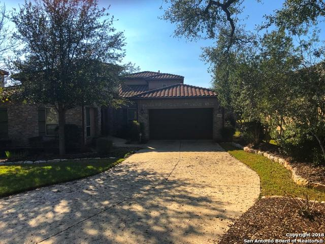 4307 Lignoso, San Antonio, TX 78261 (MLS #1292995) :: Vivid Realty