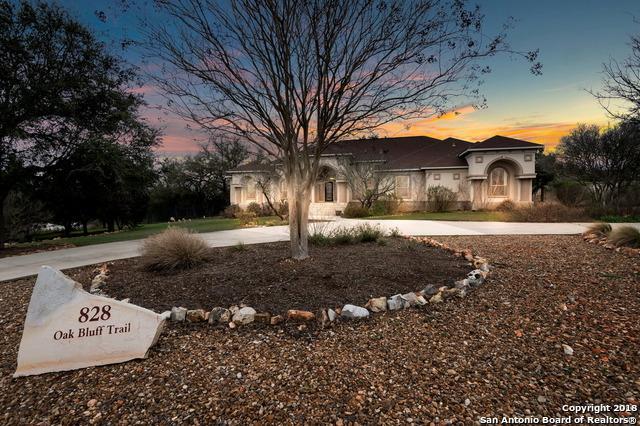 828 Oak Bluff Trail, New Braunfels, TX 78132 (MLS #1297568) :: Exquisite Properties, LLC