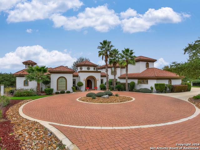 49 Persimmon Path, San Antonio, TX 78258 (MLS #1304206) :: Magnolia Realty