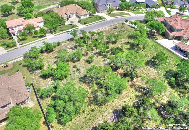 415 Legacy Ridge, San Antonio, TX 78260 (MLS #1315255) :: Alexis Weigand Real Estate Group