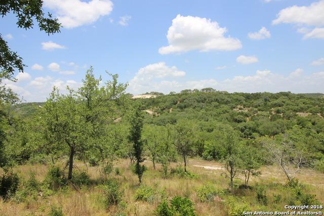2040 Park Rd 37, Helotes, TX 78023 (MLS #1318904) :: Tami Price Properties Group