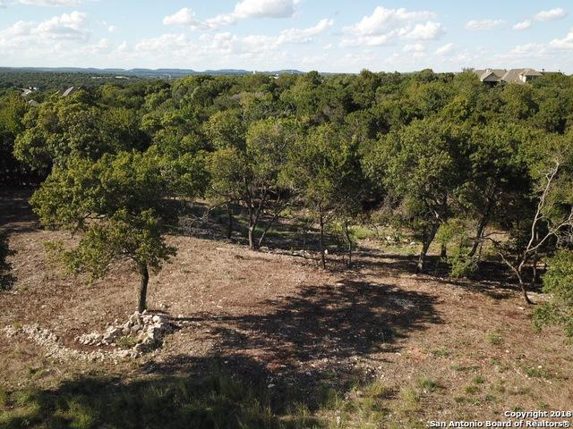 116 Fair Springs, Boerne, TX 78006 (MLS #1325993) :: Magnolia Realty