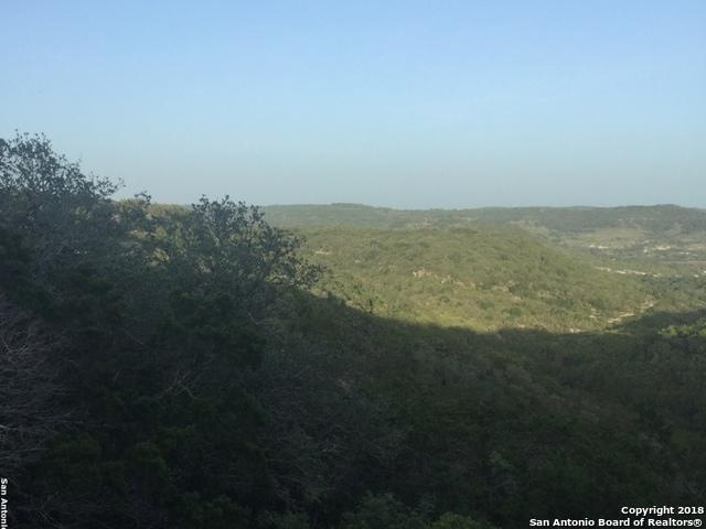 000 Lakeview Trail, Pipe Creek, TX 78063 (MLS #1326783) :: NewHomePrograms.com LLC