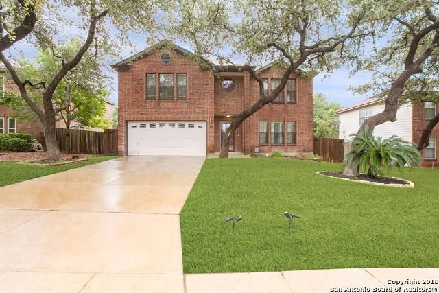 9915 Stonefield Pl, San Antonio, TX 78254 (MLS #1327414) :: Alexis Weigand Real Estate Group