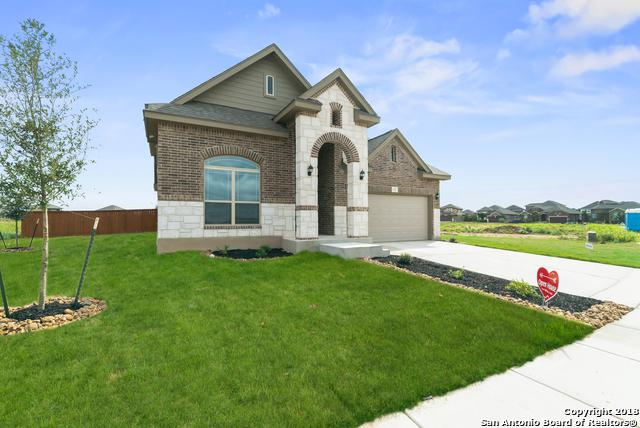 132 Emery Oak Court, San Marcos, TX 78666 (MLS #1333911) :: Alexis Weigand Real Estate Group