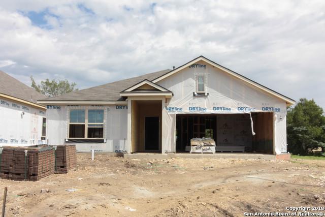 16307 Amistad Pass, San Antonio, TX 78247 (MLS #1335513) :: Erin Caraway Group