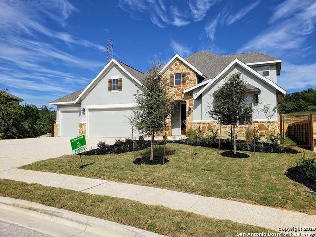 32208 Cardamom Way, Bulverde, TX 78163 (MLS #1335755) :: Exquisite Properties, LLC