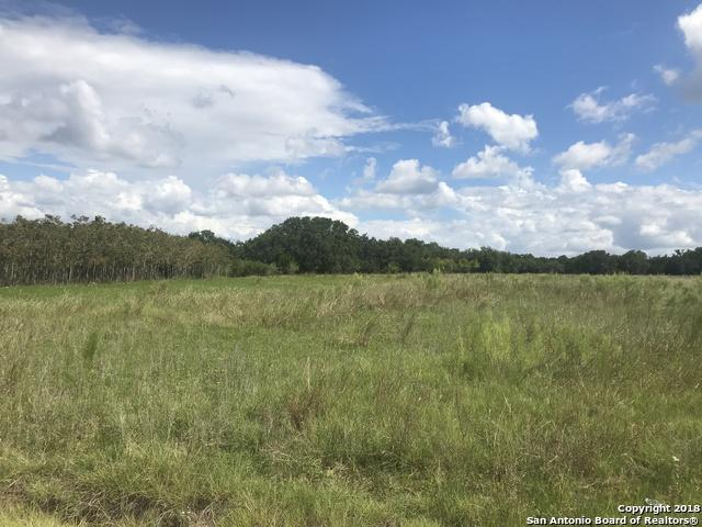 LOT 267 AND 266 Palomino Springs - Photo 1