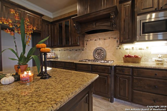 527 Rio Springs, San Antonio, TX 78258 (MLS #1339477) :: Exquisite Properties, LLC