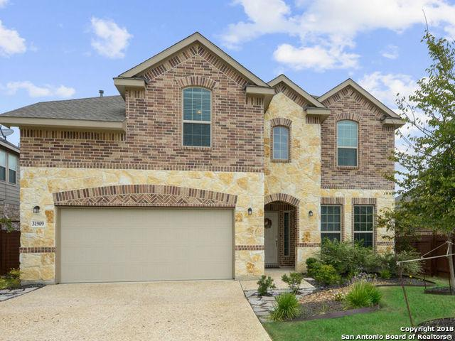 31909 Cast Iron Cove, Bulverde, TX 78163 (MLS #1342631) :: Alexis Weigand Real Estate Group