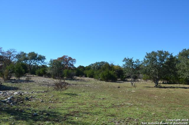"565""A""-NEW LOT Falling Water Dr, Spring Branch, TX 78070 (MLS #1350389) :: Alexis Weigand Real Estate Group"