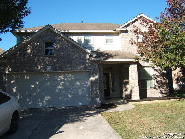 1238 Alpine Pond, San Antonio, TX 78260 (MLS #1351855) :: Exquisite Properties, LLC