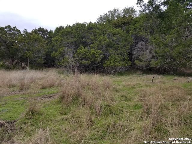 2550 Tanglewood Trail, Spring Branch, TX 78070 (MLS #1355900) :: ForSaleSanAntonioHomes.com
