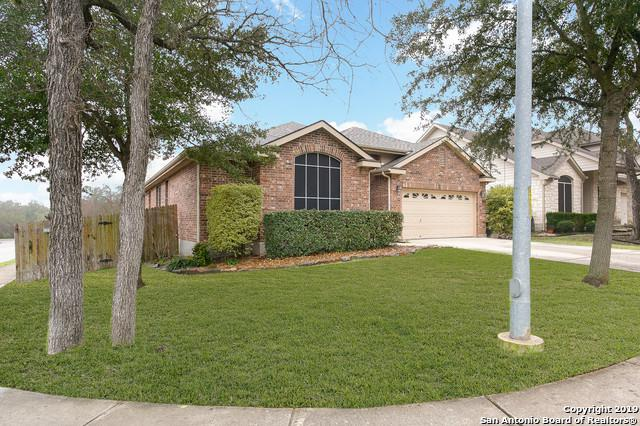 2520 Hourless Oaks, Cibolo, TX 78108 (MLS #1360685) :: Alexis Weigand Real Estate Group