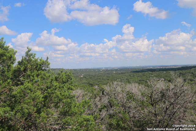 15025 Chinquapin, Helotes, TX 78023 (MLS #1363515) :: The Gradiz Group