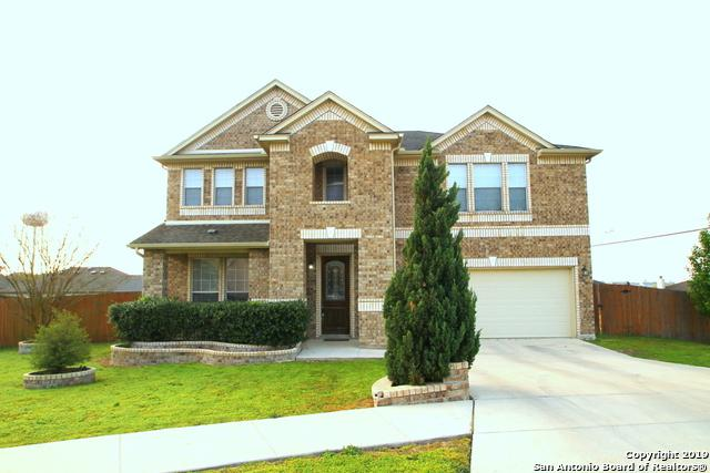 204 Springtree Trail, Cibolo, TX 78108 (MLS #1363534) :: Alexis Weigand Real Estate Group