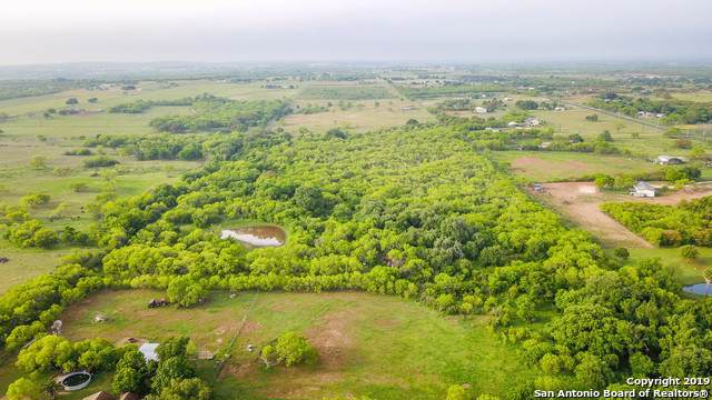 13220 Us Highway 87 S, Adkins, TX 78101 (MLS #1375454) :: Alexis Weigand Real Estate Group