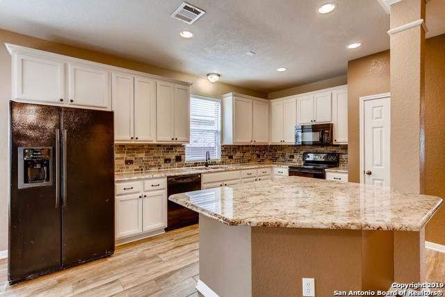 236 Nomad Ln, Cibolo, TX 78108 (MLS #1389161) :: BHGRE HomeCity