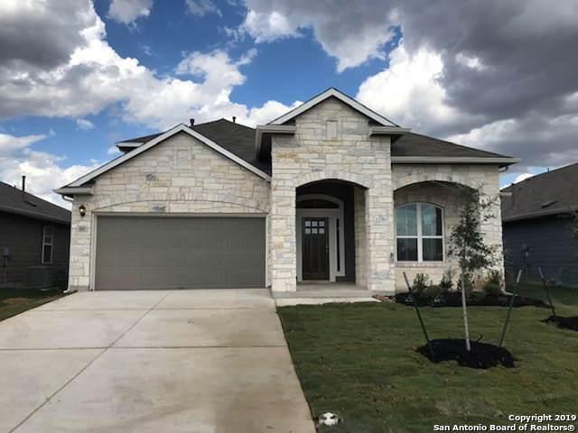 568 Agave Flats, New Braunfels, TX 78130 (MLS #1391934) :: Neal & Neal Team