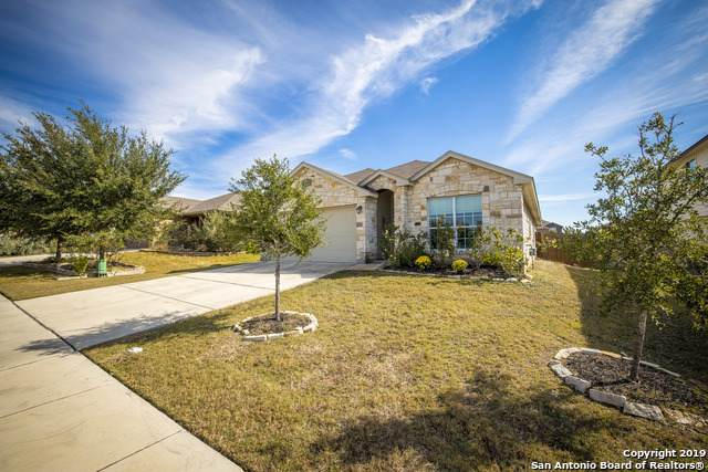 2922 Oakbranch Ridge, New Braunfels, TX 78130 (#1395970) :: The Perry Henderson Group at Berkshire Hathaway Texas Realty